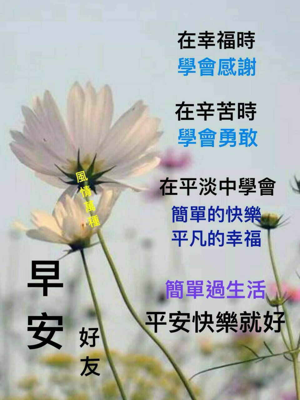 要找翻译人员各种语言50位请联系电话号码0968161231