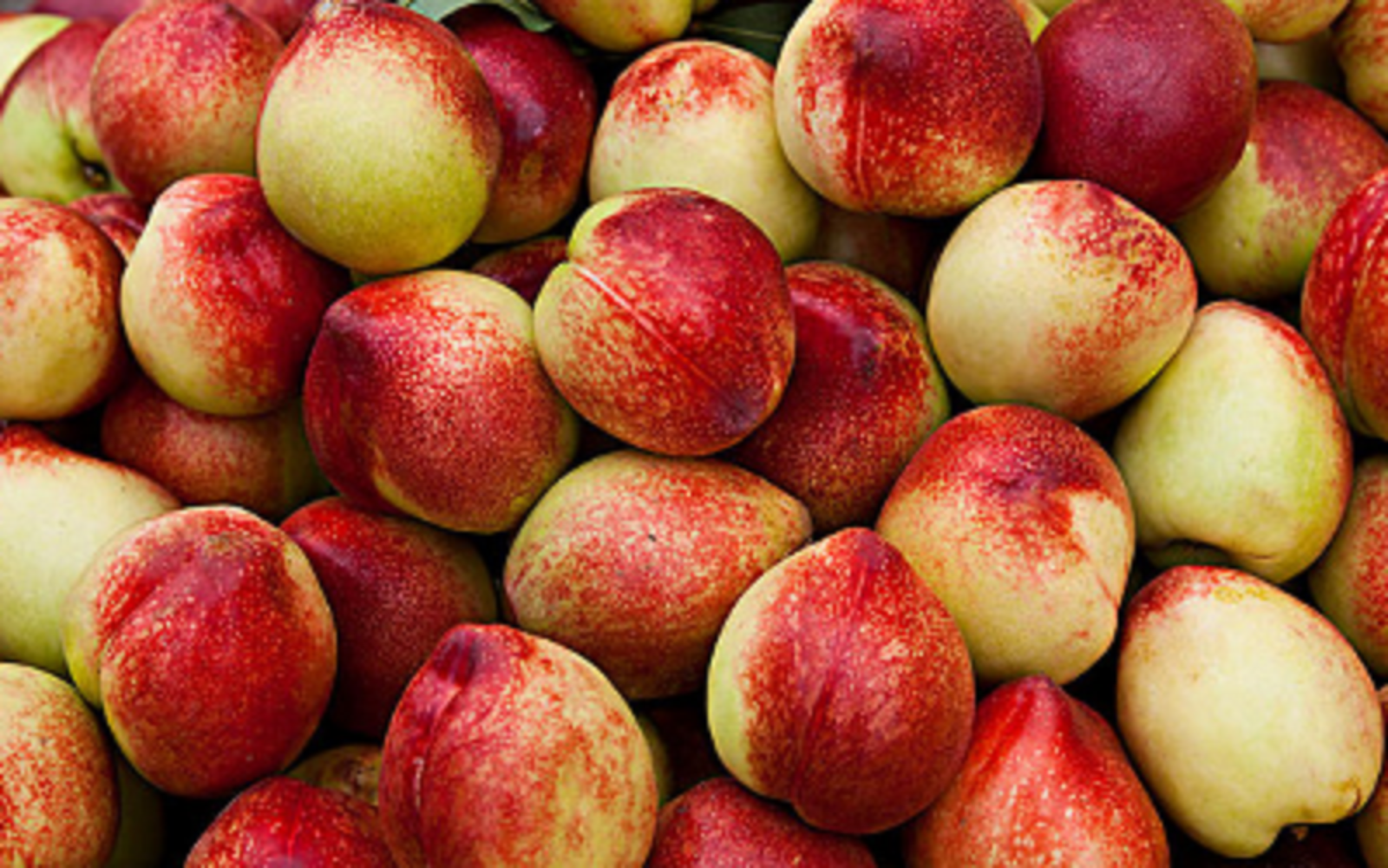 """水果双拼活动来啦!桂圆+80%的人都没有吃过的""""佛头果""""..."""